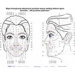 Плакат биологически активных точек лица 84х60 см.