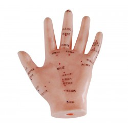 Model dłoni 13 cm